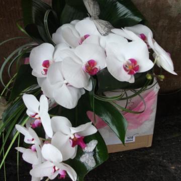 Bridal Teardrop Bouquets